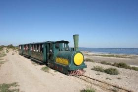 Découverte du Domaine Paul Ricard en petit train