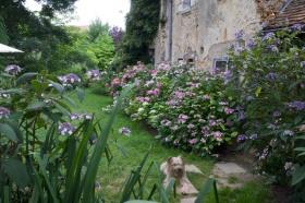 Jardin de la collection végétale Annabelle