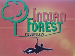 indian forest figuerolles