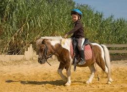 École d'Equitation Préty-Cuisery