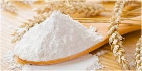 Visite guidée et commentée retraçant les étapes de fabrication ancestrales de la farine