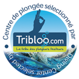 Tribloo.com