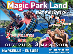 MAGIC PARK LAND