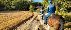 Randonnée équestre  - Horse & Ventures