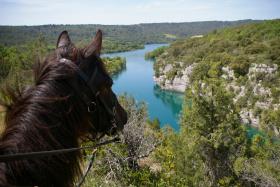 Visite des Gorges du Verdon à Cheval